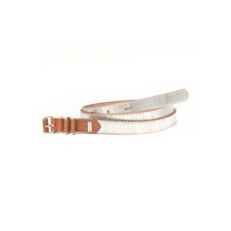 Image for METALLIC BELT from Tommy Hilfiger USA