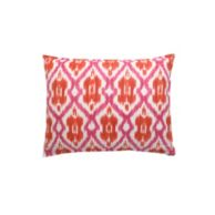 PREPPY IKAT DECORATIVE PILLOWS 18' SQUARE $49.99