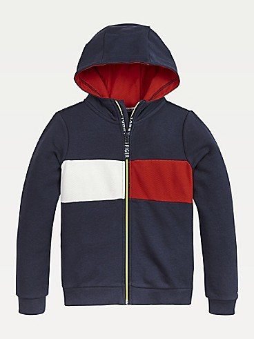 타미 힐피거 Tommy Hilfiger TH Kids Sport Flag Hoodie,TWILIGHT NAVY