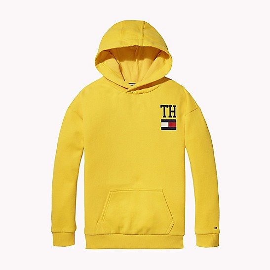 17a79f61bf6d SALE TH Kids Icon Hoodie