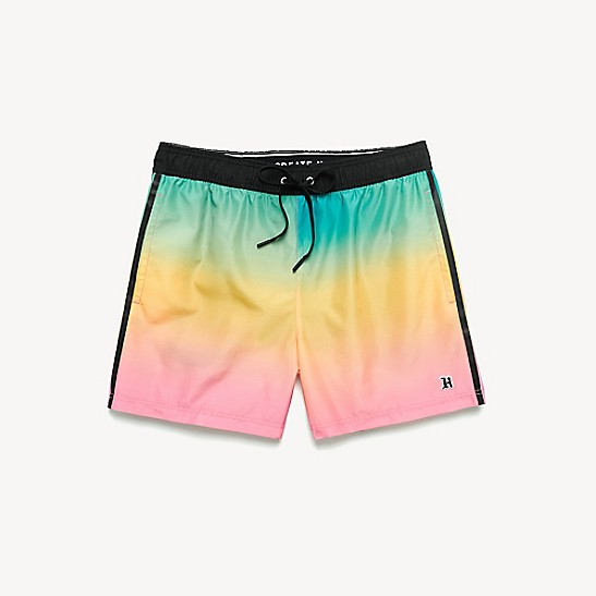e2fb0d410386 Lewis Hamilton Ombre Medium Swim Shorts